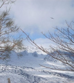 Escursioni E Trekking Sull'etna Etnatracking